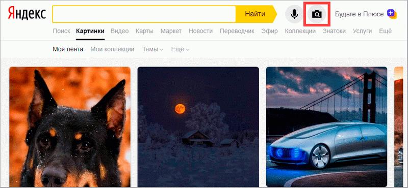 Поиск по картинке: как найти по фото в Яндексе и не только